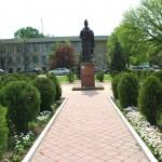 Statuie Liviu Vasilica